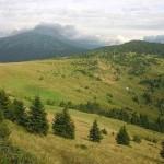 uzhanskij-park_2.jpg.dbc03f2f287ff34d3a09bbc16a63af33