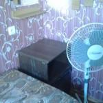 эконом с вентилятором